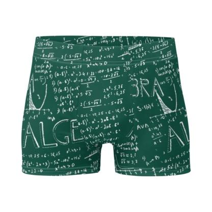 Green Chalkboard Math Algebra Boxer Briefs Men's Underwear